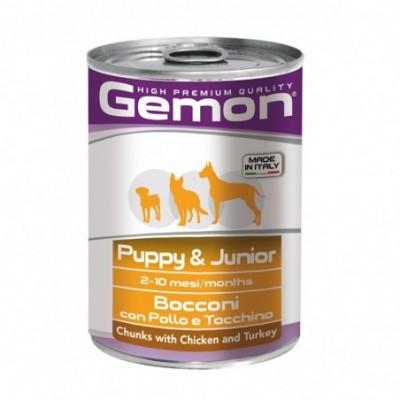 Gemon all breeds puppy...