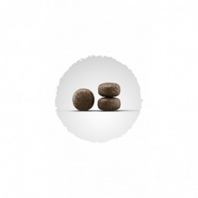 Vienkartinės nitrilinės pirštinės S dydis 20 vnt